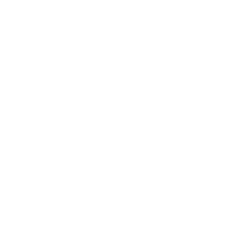 Sailing with Irene logo